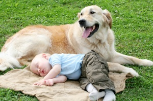 Dog and Baby on blanket