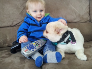 Kid with puppy