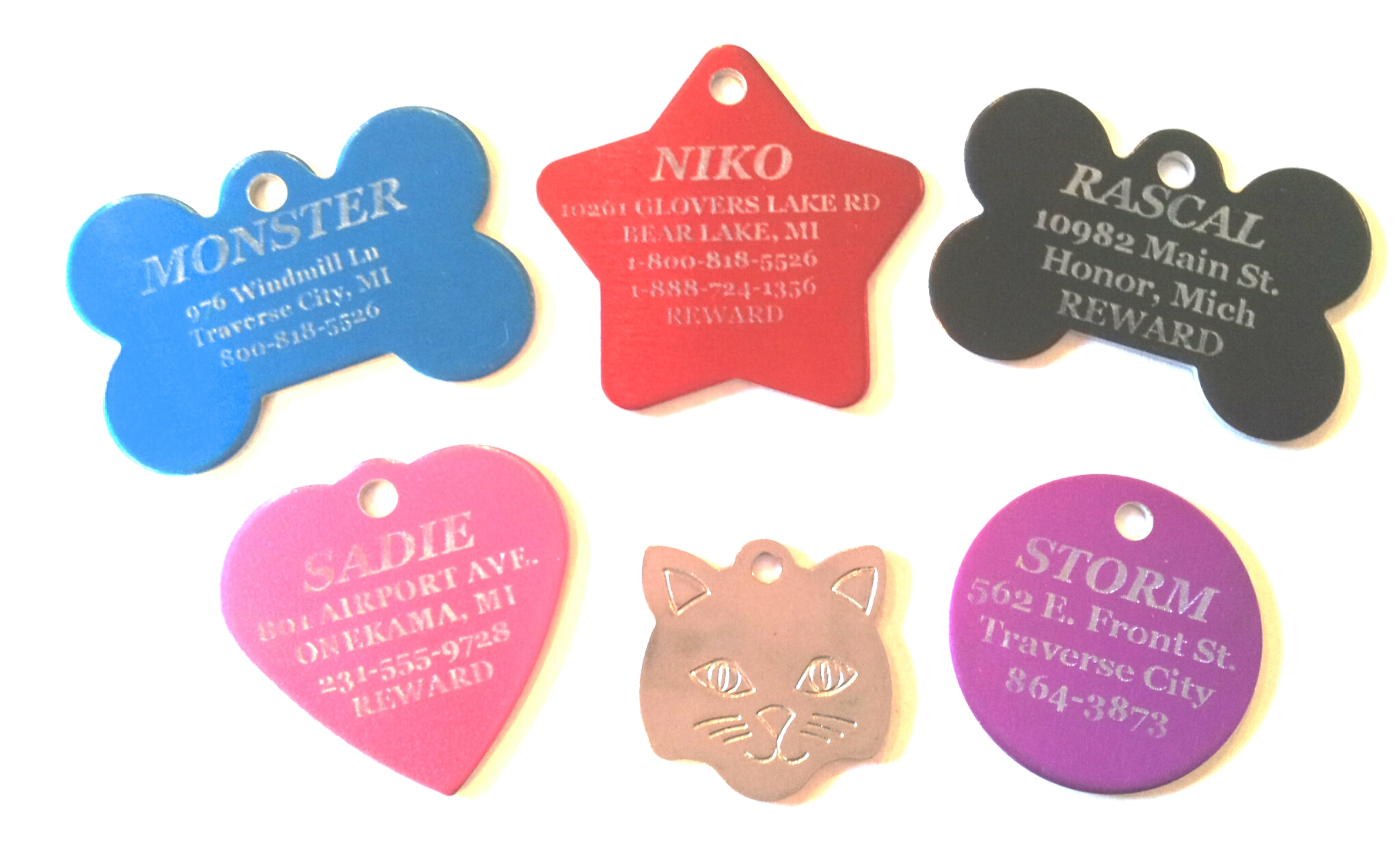 pet tags differentiating pets from strays overnight pet. Black Bedroom Furniture Sets. Home Design Ideas